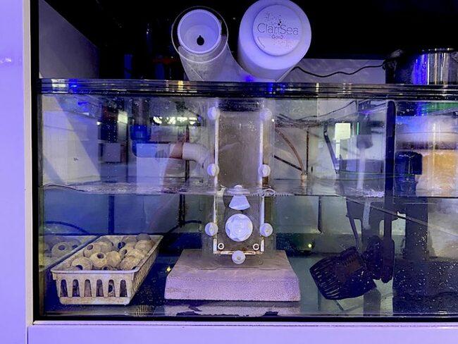 на какую глубину ставить фильтр в аквариуме