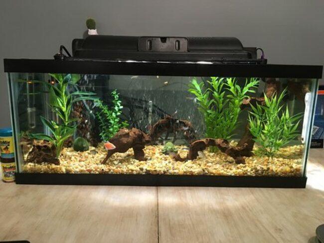 как собрать внутренний фильтр для аквариума