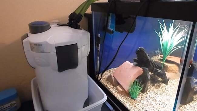 как должен работать фильтр в аквариуме видео