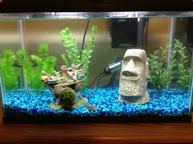 установка фильтра в аквариум фото