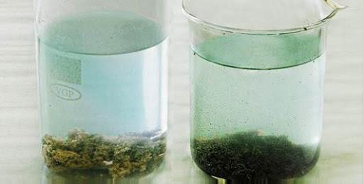 способы и методы улучшения качества воды
